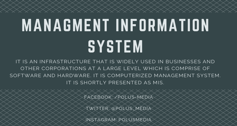 MANAGMENT INFORMATION SYSTEM - MIS
